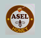 ASEL MED